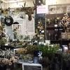 《アーティス3階》クリスマスフロア!本日オープンしました!!