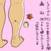 膀胱経(BL)57  承山(しょうざん)