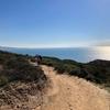 銀色の海原のトーリーパインズで断崖絶壁からビーチに下りるトレイル | カリフォルニアのトレッキング