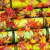 京都・花灯路の季節が近づいて来た