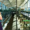 フウナ in リアル 2020・3月 高輪ゲートウェイ駅