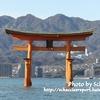 【御朱印】年末休暇に広島・宮島で写真を撮ってきた【①厳島神社編】