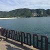 和歌山海釣り公園