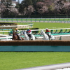 16/04/16 Japanese Racing - Sustainability of Jump Racing -