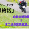「福井」ネコ住む寺に癒しを求め...秋の晴れ間にまったりツーリング「最終話(ninja650)」