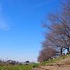(2017.12.10)休日川沿い小散歩!