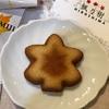 広島のお土産におすすめ!楓乃樹のメープルもみじフィナンシェ&広島チョコラ。思わず広島へ行きたくなります。。。