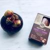 カオコーのマンゴスチン石鹸@タイ, バンコク【Khao Kho:Mangosteen Natural Bar Soap】
