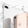 【iPhone 8】IIJmio、mineoともに動作検証を終了、問題なし