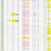 新型コロナウイルス、都道府県別、週間対比・感染被害一覧表 (6月25日現在)