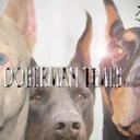 Doberman's Blog/ドーベルマン ブログ    (ドーベルマン.com)