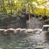 植木温泉 今宵の湯宿 悠然(熊本)