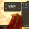 【モンハンライズ】紅蓮石の効率の良い集め方(溶岩洞最深部の行き方)
