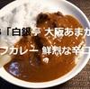 S&B「白銀亭 大阪あまからビーフカレー 鮮烈な辛口」頂きました!^^【金曜日はカレーの日⑫】