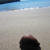 毎日一枚。「暖かくなってきたので。」おすすめ度:☆☆☆☆ ~写真で届ける伊勢志摩観光~