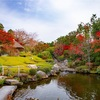 京都・花園 - 妙心寺退蔵院の紅葉