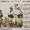 「佐久の季節便り」、「ミズバショウ(水芭蕉)園」が、テレビ放映されました。