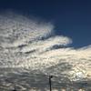 【おばコラム】女心と秋の空はなんとやら。いわし雲とひつじ雲の違いとは!?【第105回】