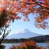 2014年11月1日(土)⇒24日(月・祝)、河口湖畔で「富士河口湖 紅葉祭り」が開催されます。中央道 河口湖ICから。