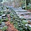 世界遺産の多い南紀熊野のみどころやアクセス方法をご案内