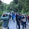 【2018年冬中米+キューバ旅行】コスタリカで幻の鳥ケツァールを見る。