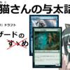 【#MTG】青緑ウィザードの紹介と戒め【#ゼンディカーの夜明け ドラフト】