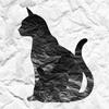 【感想・レビュー】迷ぃ猫、母猫ヲ捜ス旅(脱出ゲーム、ホラーゲーム)【スマホゲーム】
