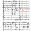 Brahms Symphony No.1 Movt. 4