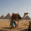 翔さん、私もエジプトへ連れて行って