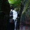 猛暑の日本列島ですが、六甲山を歩くシーズン4最終回19㎞を楽しく歩きました。