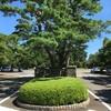 ポケモンGOでポケモンハントのついでに多磨霊園で偉人に会ってきた。