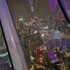 ペトロナスツインタワーのツアーに参加しなかった理由はKLタワーから見下ろしたかったから【週末弾丸一人旅マレーシア編-17】