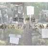 諏訪神社はただ参拝するだけじゃない(⦿_⦿)隠れたスポットや狛犬たち