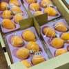 香川県フルーツ定期便「びわ」