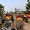 象に乗ってとても暑い寺院巡り【バンコク】