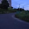 おわり坂~天野街道~穴地蔵をラン。暑いですね~。。脱水注意!