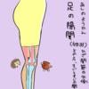 胆経(GB)33  足の陽関(あしのようかん)
