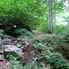 ◆'19/08/04~06     朝日連峰縦走①…のんびり歩き出した