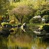 【ロンドンエリア紹介】Holland Park(ホランドパーク)  西部ゾーン2