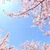 4月の星からのMessage 天秤座~魚座
