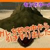 【モンハン実況#9】MHW出る前に無印やる【ドスガレを砂の中から引きずり出したる!】