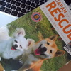 日本レスキュー協会を支援。。。
