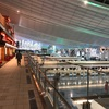 弾丸!上海トランジット旅①|5時間で上海を満喫してきた!