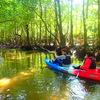 島旅でアウトドア体験〜西表島で人気の観光カヌーツアー