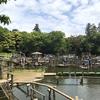 清水公園のアスレチックが熱い!フィールドアスレチックの盛り上がりを体験したよ
