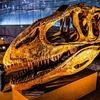 福井県立恐竜博物館 (福井旅行 2)