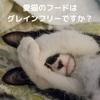 愛猫にピッタリのフード選べてますか?国産のグレインフリー選ぶならこれ!