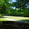静岡県 柿田川公園へ