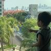 シンガポール旅行記1日目(フライト・ハードロックホテル編)