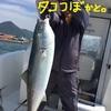 関門海峡で奇跡の一撃
